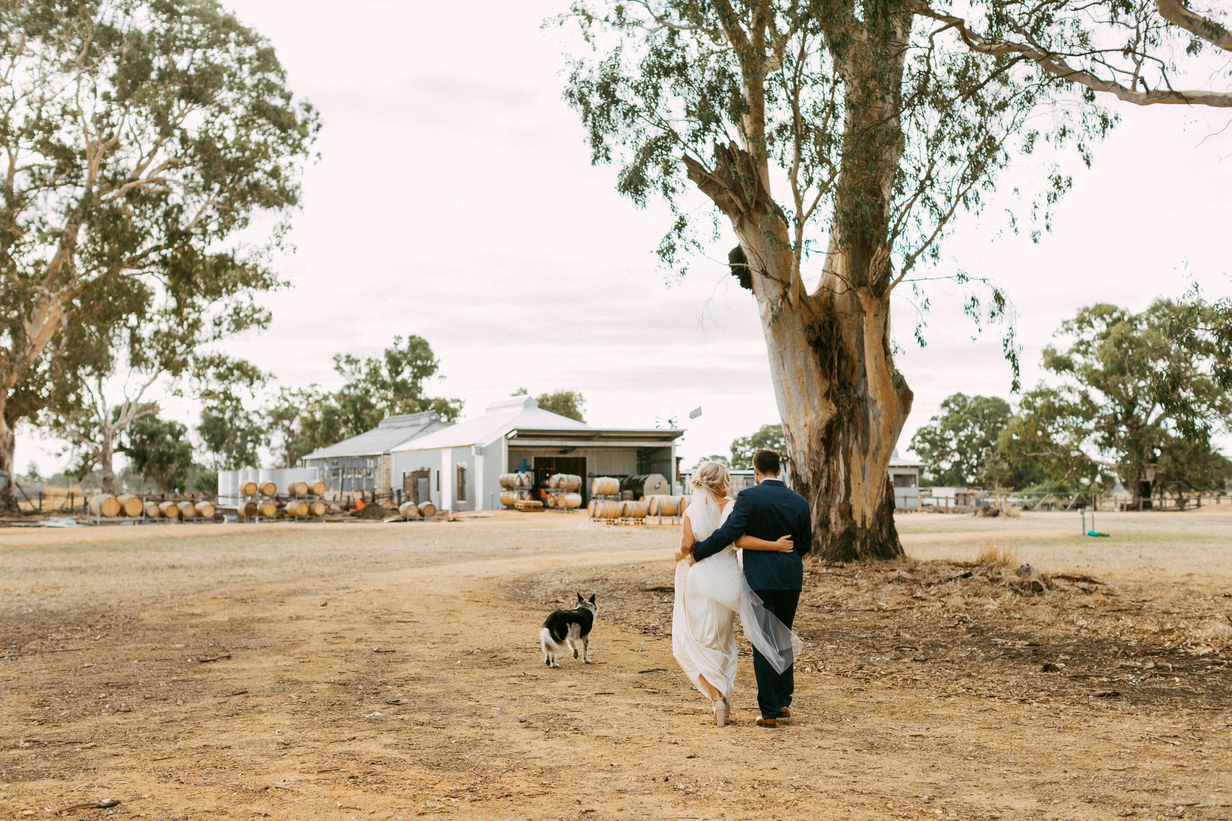 Coonawarra Elopement South Australia 044.jpg