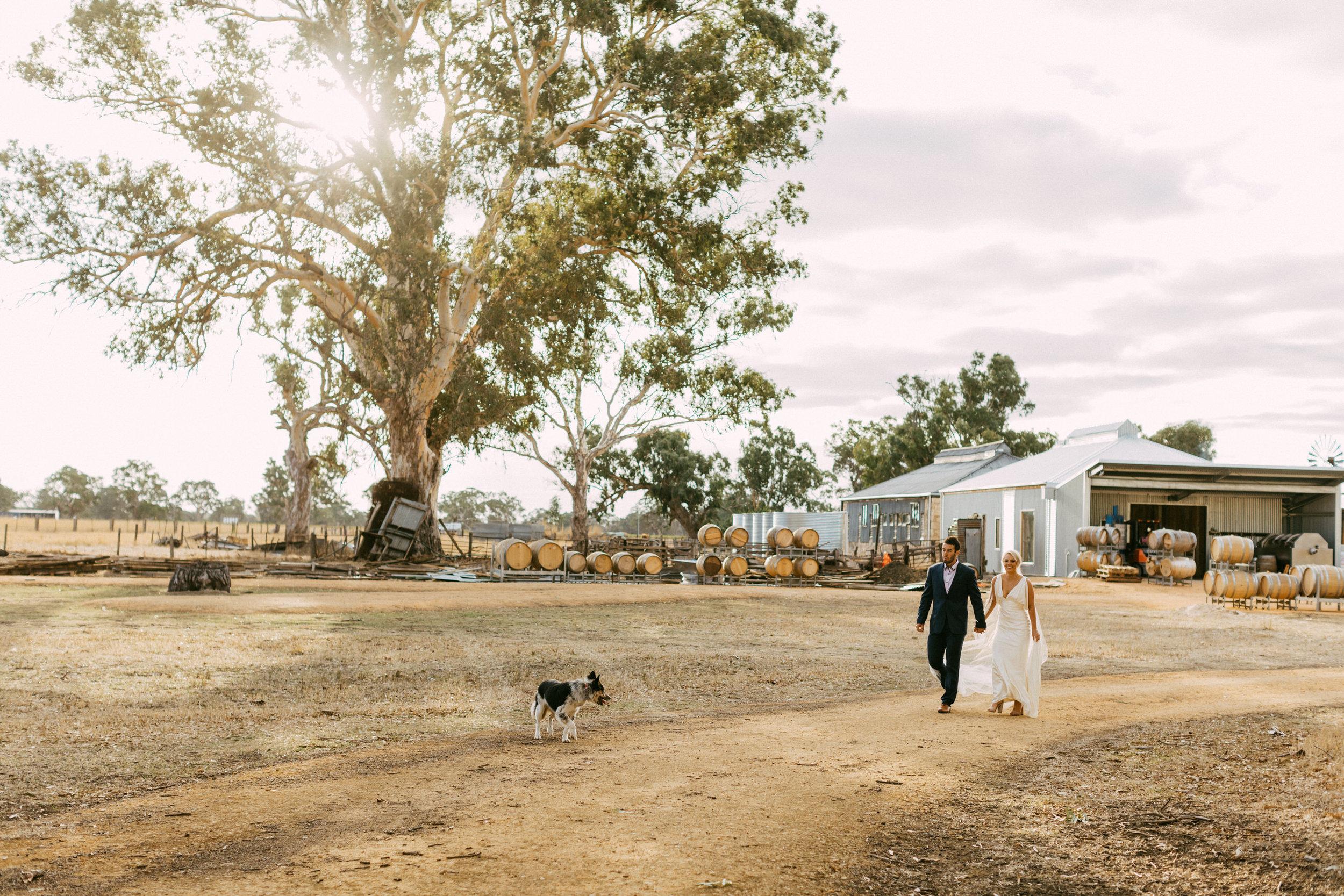 Coonawarra Elopement South Australia 048.jpg