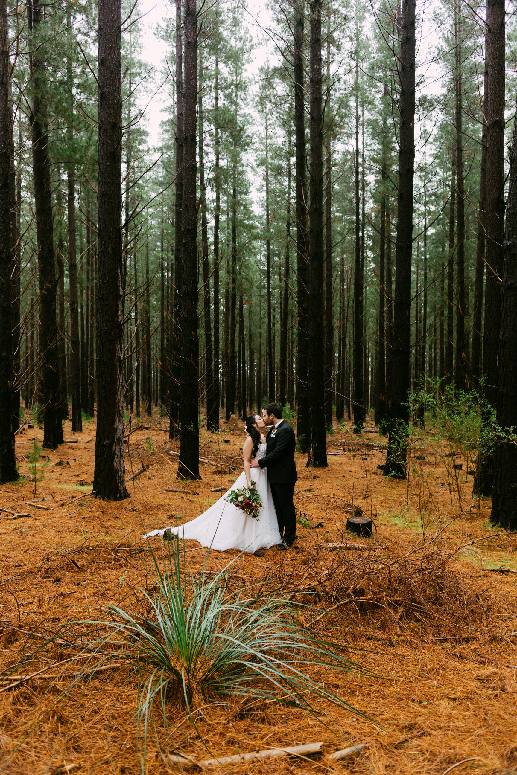 Kuitpo Forest Micro Wedding 044.jpg
