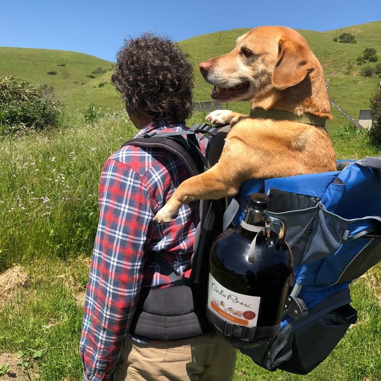 Packing light is overrated. Tag your summer hiking buddy!    #RoadDog       #Summer       #RossiSangria