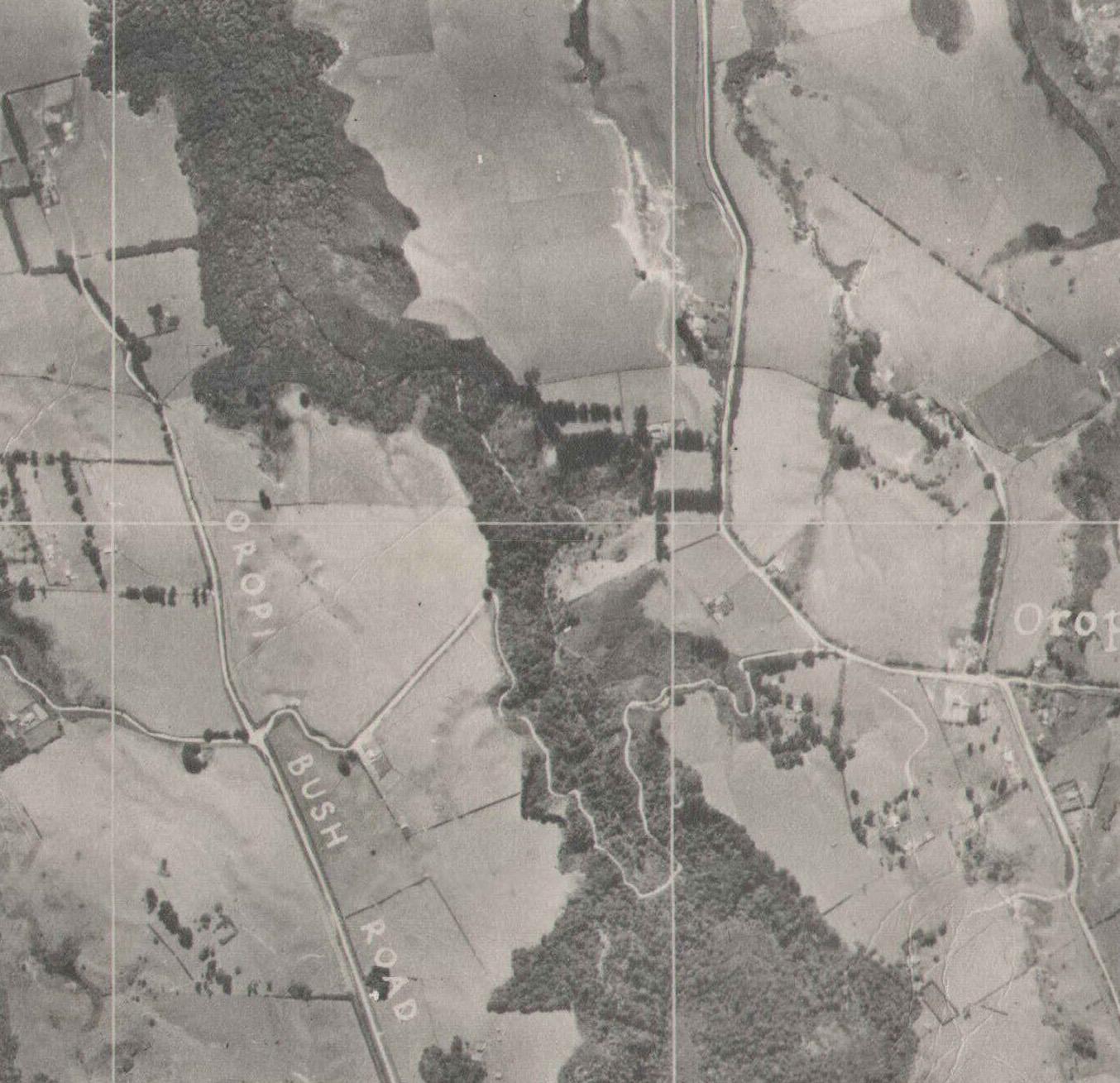 1943 aerial map - Oropi Bush Rd became Gluepot Rd