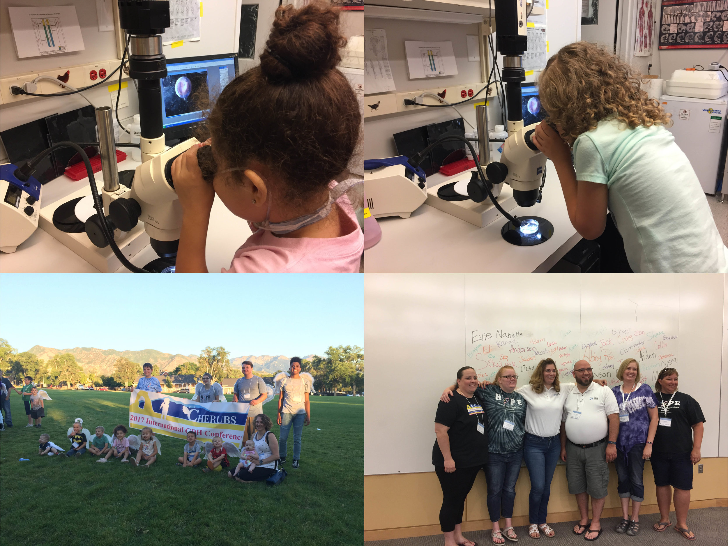 CDH families gather at the University of Utah to share stories, learn about research, and make advocacy plans. Wonderful to have them visit the Kardon lab!
