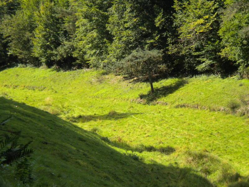 Iggelbach Wanderweg 3.JPG