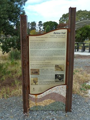 Barossa Trail - Nuriootpa