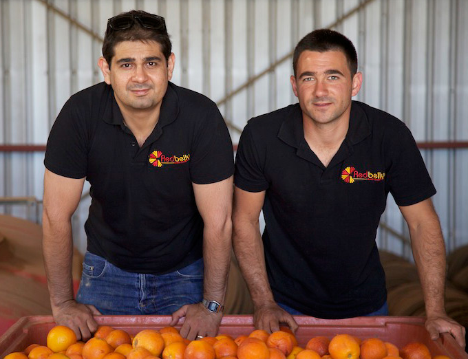 LEFT. LEONARD MANCINI. RIGHT. VITO MANCINI. DIRECTORS OF REDBELLY CITRUS.