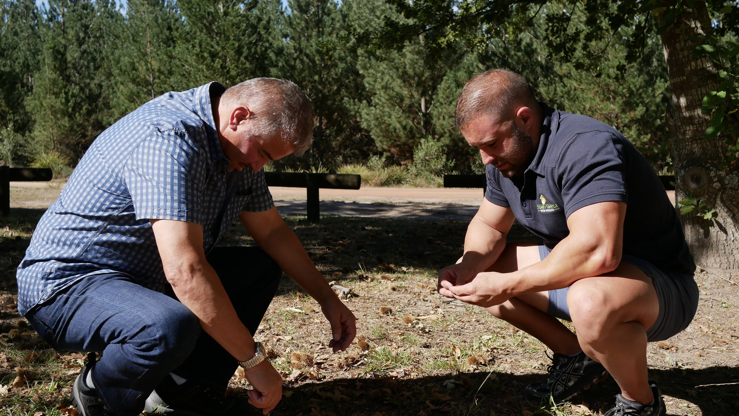 LUKE AND ACCOUNTS MANAGER ANTHONY FARRE HUNTING FOR PINE MUSHROOMS.