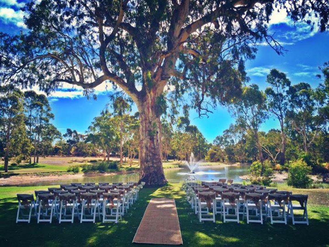 Wedding ceremony at Serafino, McLaren Vale South Australia