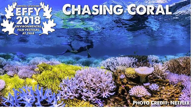 #EFFY2018 Feature Film- Chasing Coral. TODAY, April 7th at 3pm, Evans Hall- Yale School of Management!#chasingcoral