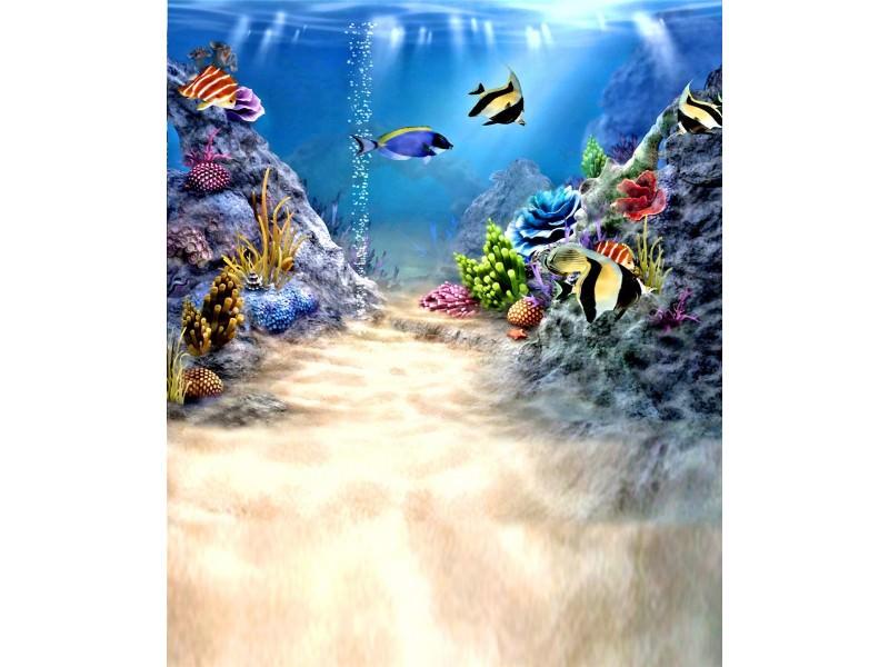 underwater_mini.jpg