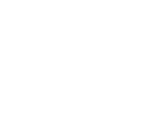 BKRL_9_ticket_icon.png