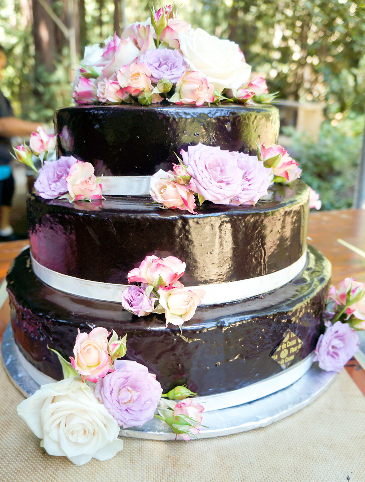 Wedding cake Santa Cruz mtns.jpg