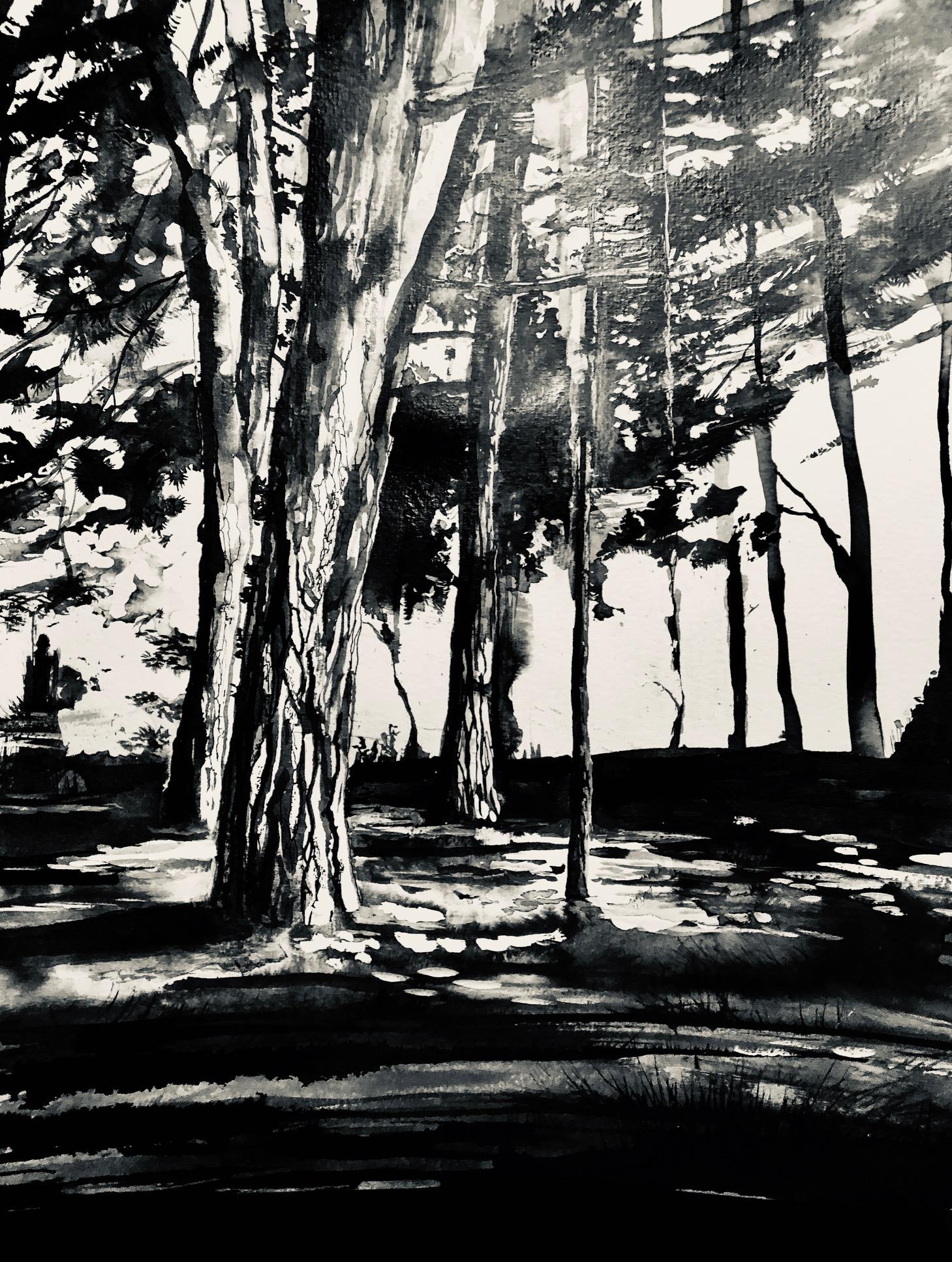 Forêt de pins, 2019