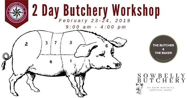 Really excited about this workshop with @sowbellybutchery. These pigs from @kvccfarm are ✨. DM for more info on how to sign up.