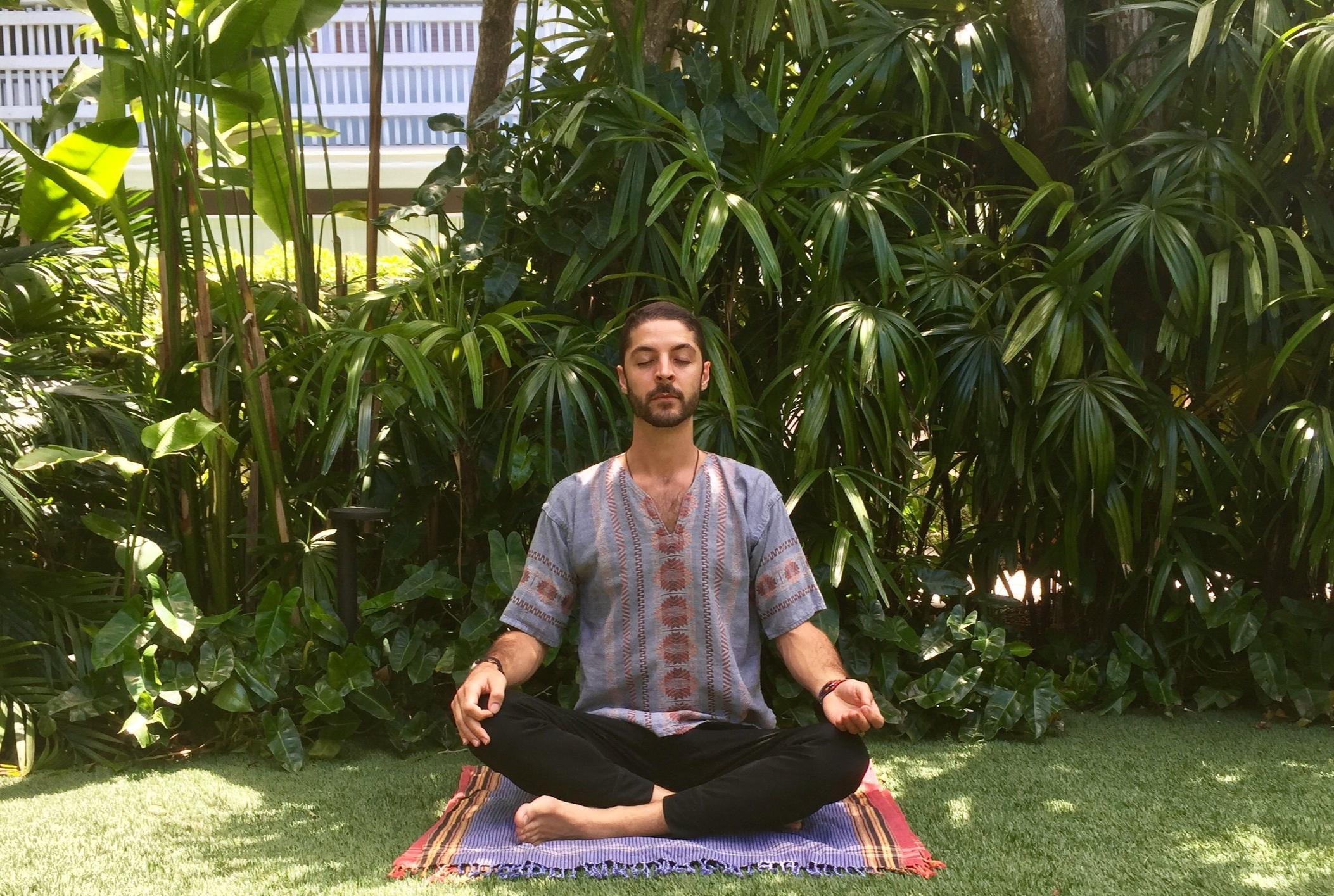The Standard Meditation.jpg