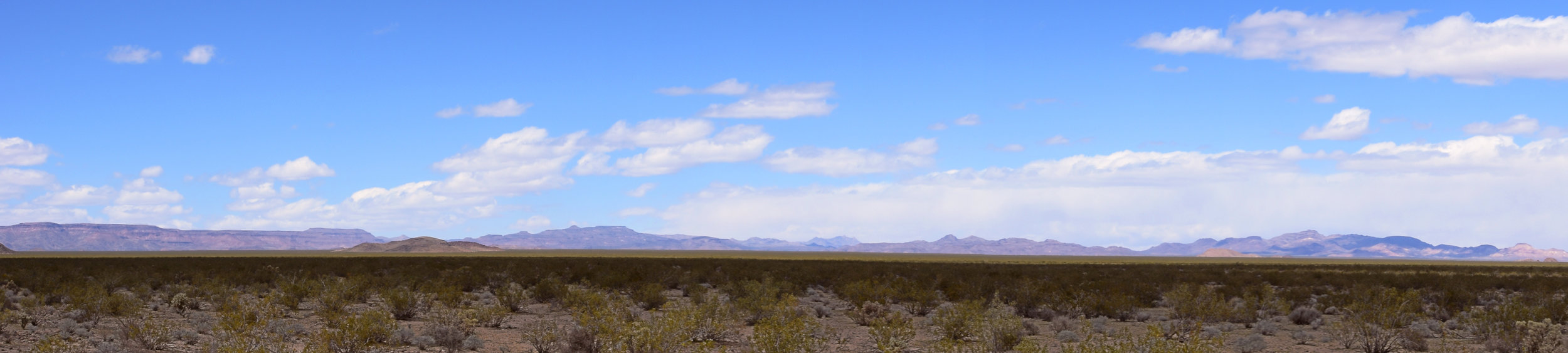 Fenner Valley, Mojave National Preserve - Photo by Tim Giller