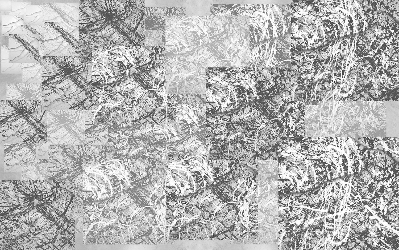 Sara | After Pollock