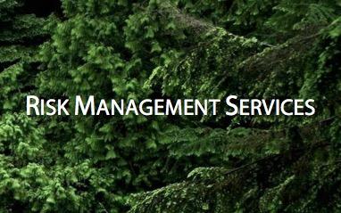 Risk Services.jpg