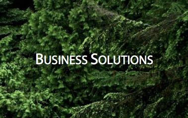 Business Solutions.jpg