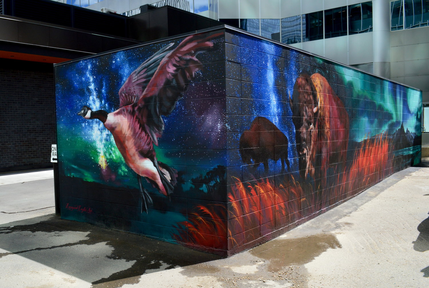 Ashop-Lacey&Layla-Container Mural-Alberta-2017