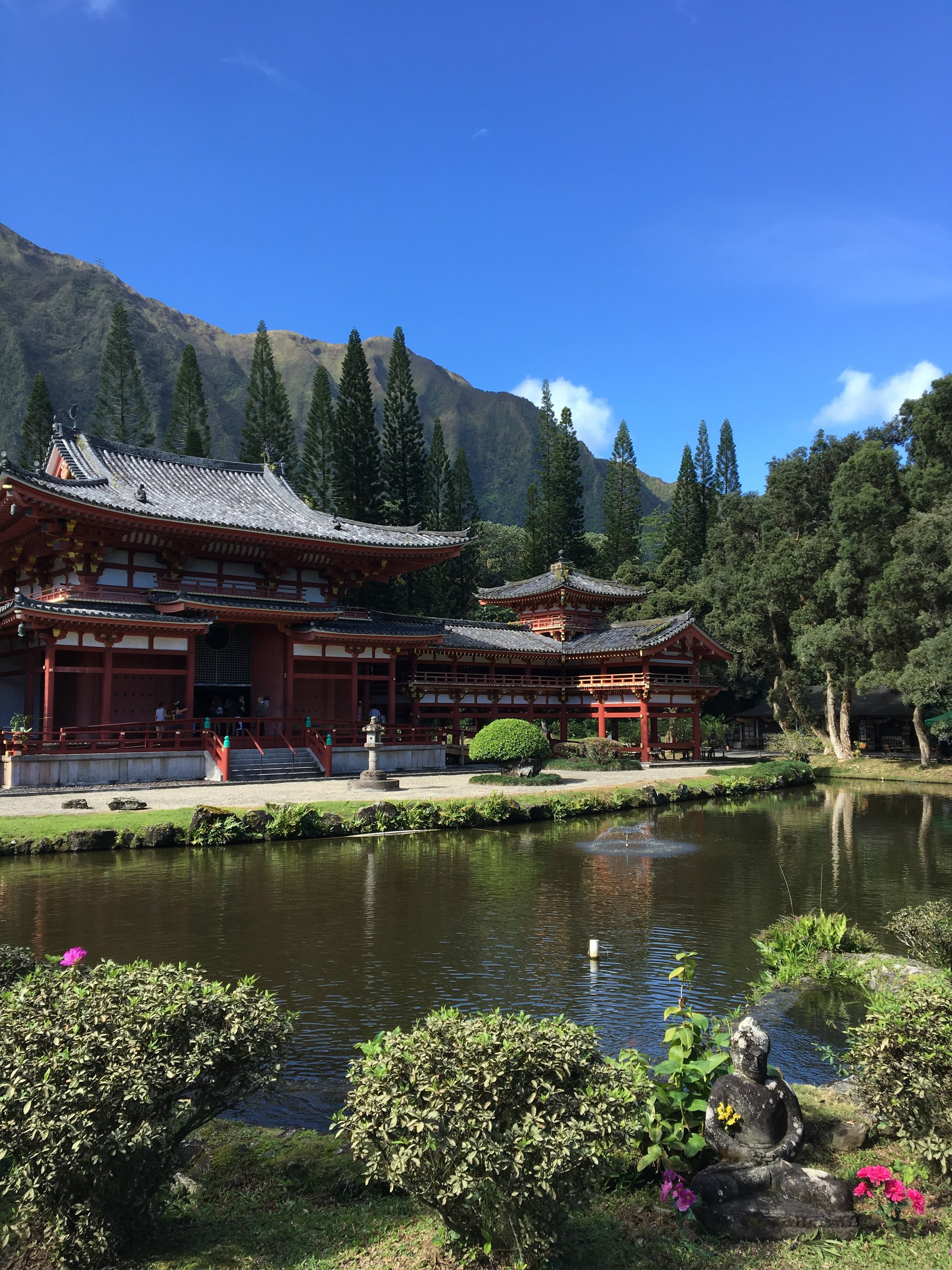 Visiting Byodo-In Temple on the Windward side of Oahu with mom and dad!