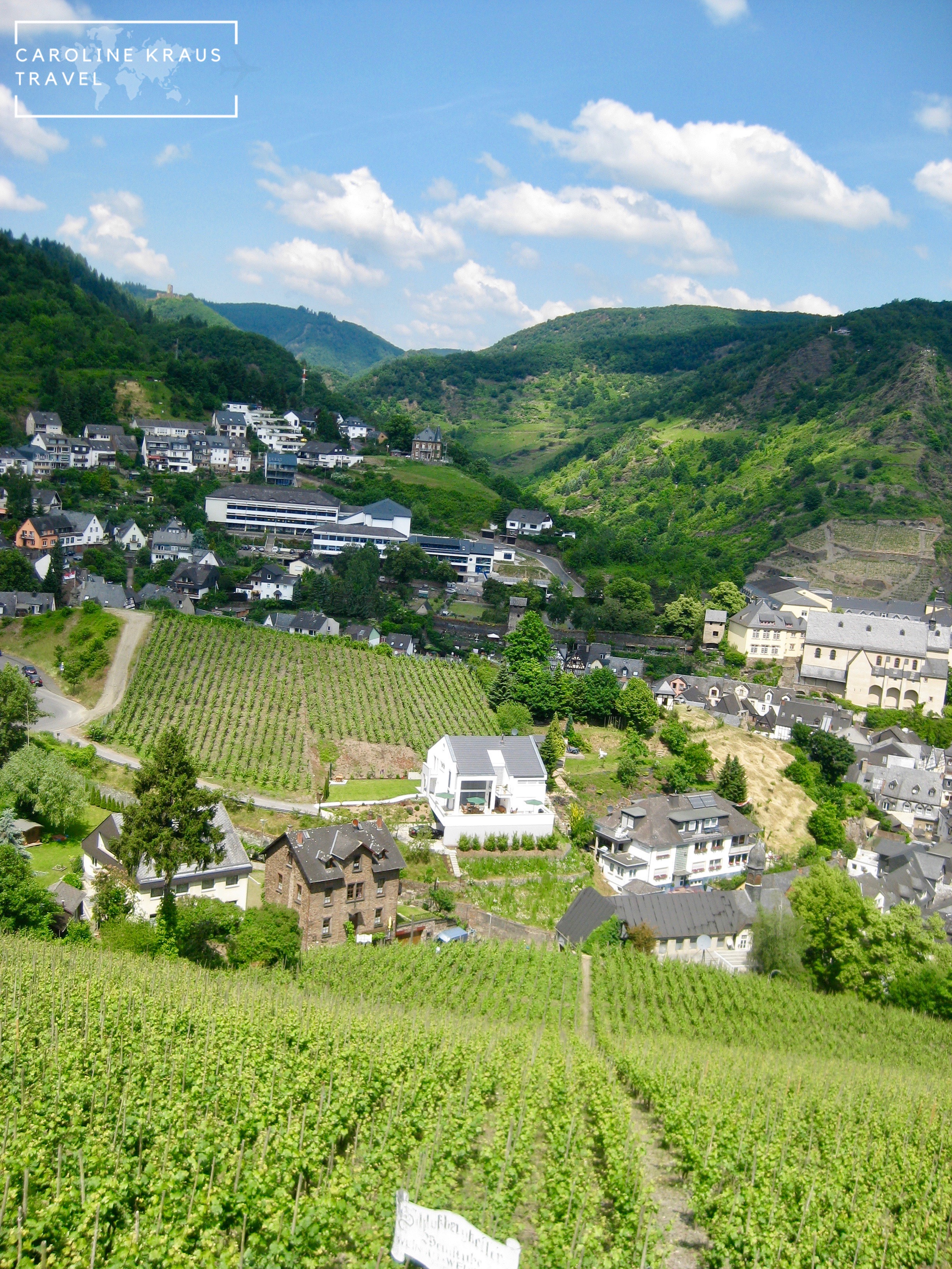 Vineyards in the Mosel Valley, Germany