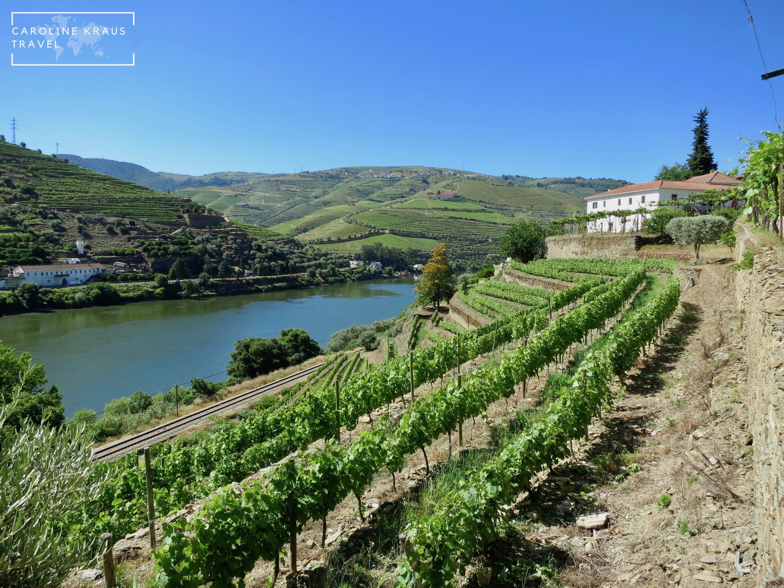 Quinta de la Rosa vineyard in the Douro Valley, Portugal