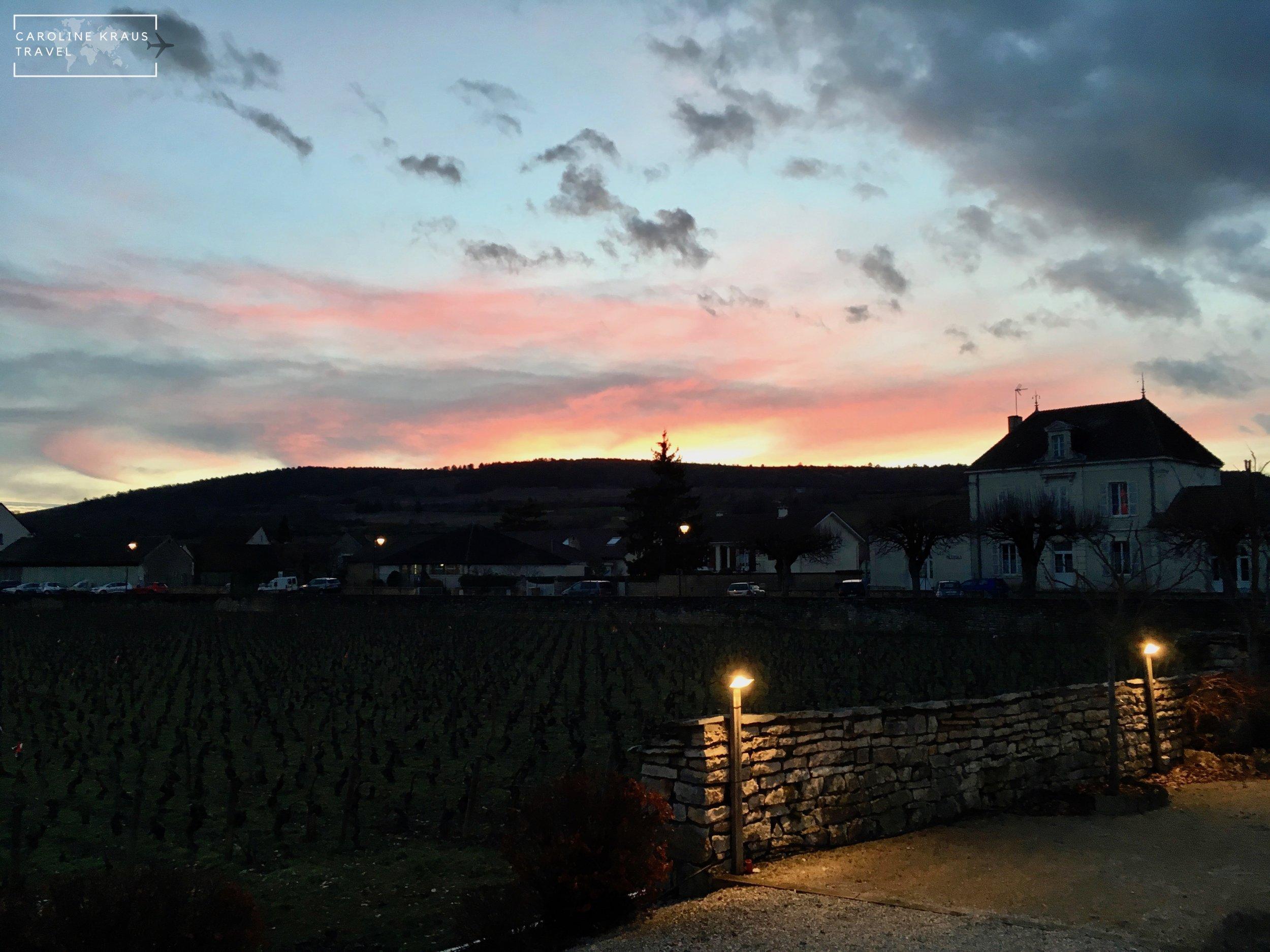 Sunset over the backyard vineyards