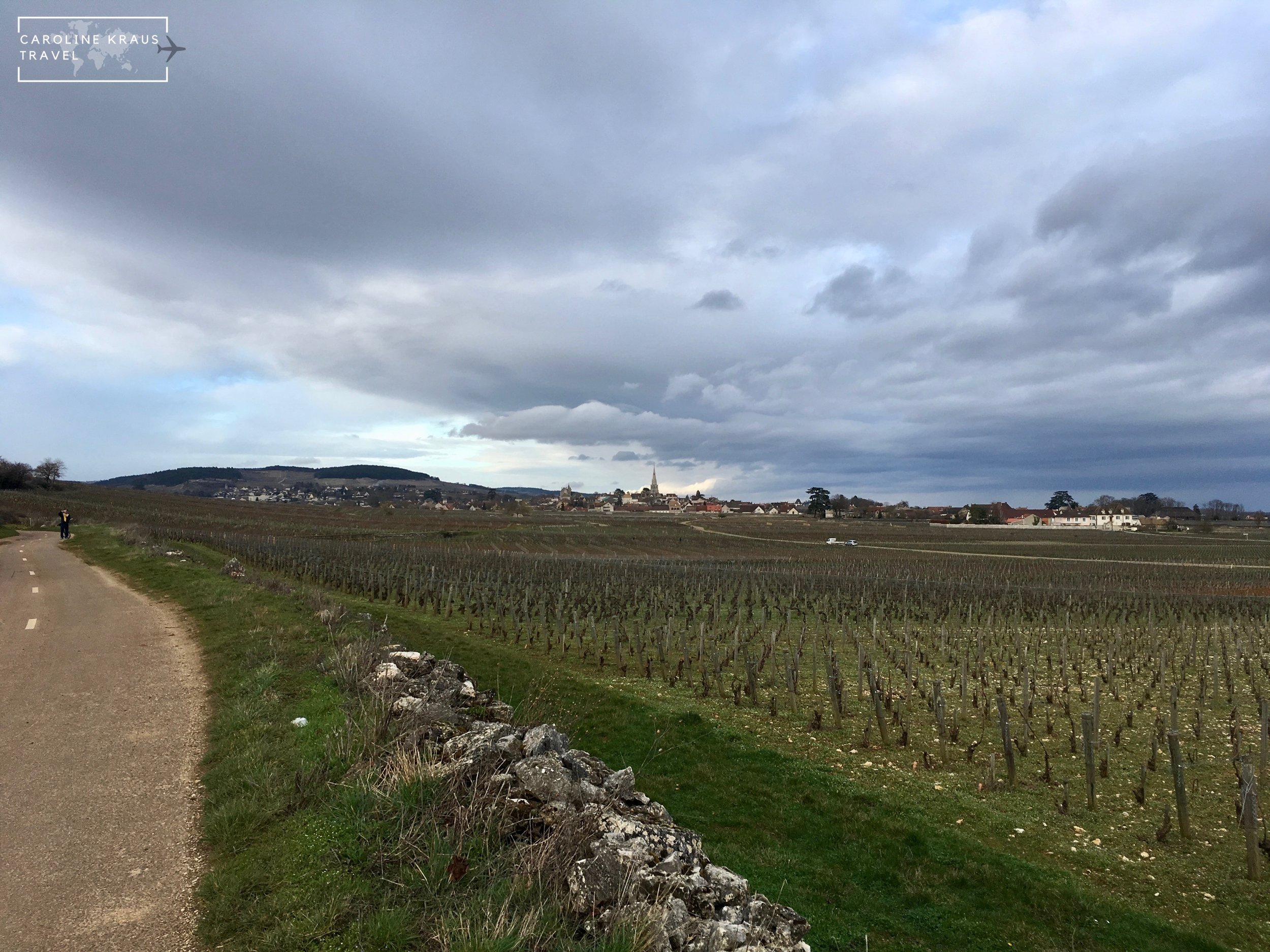Meursault from a distance on our bike ride