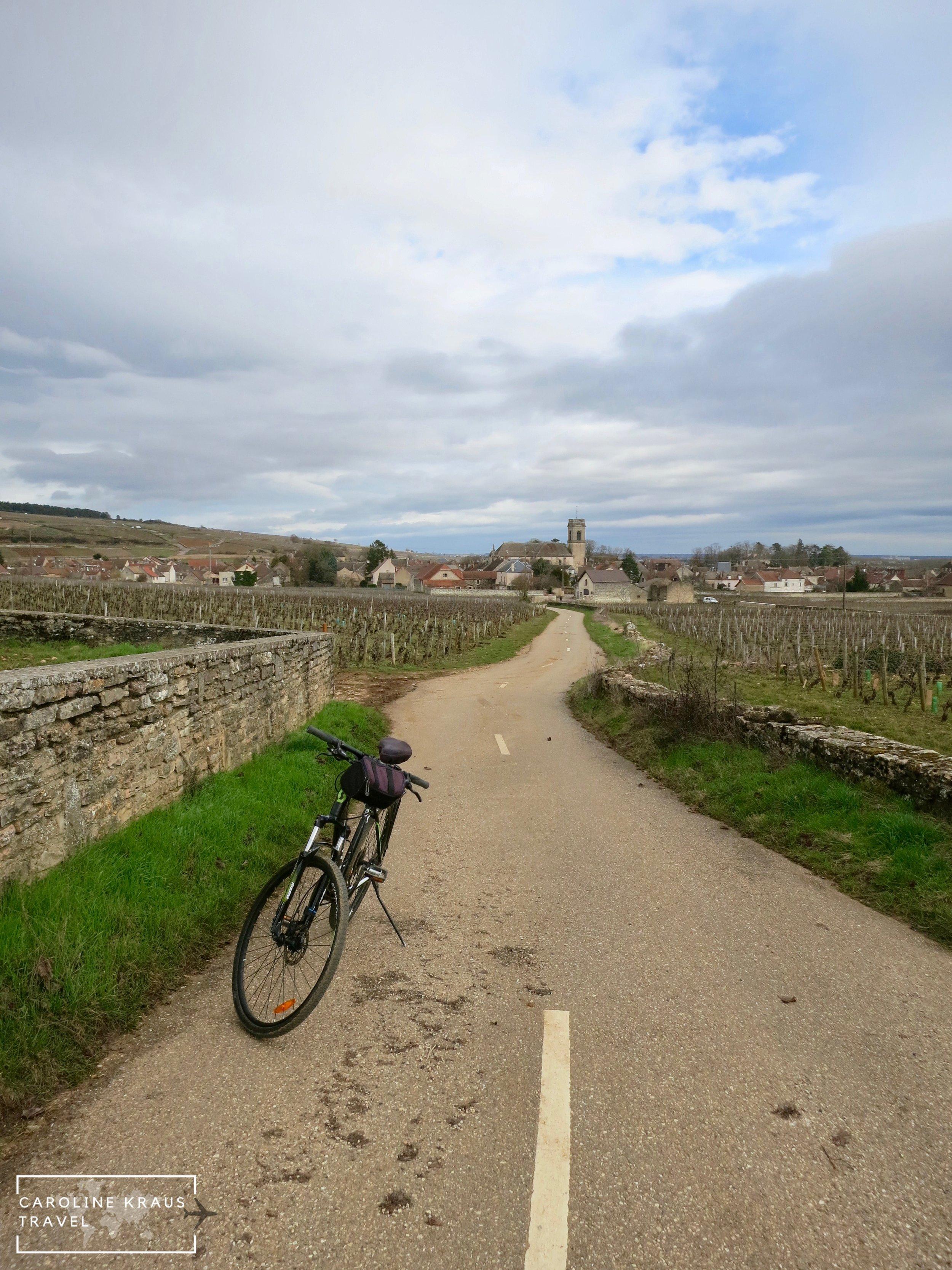 The village of Pommard