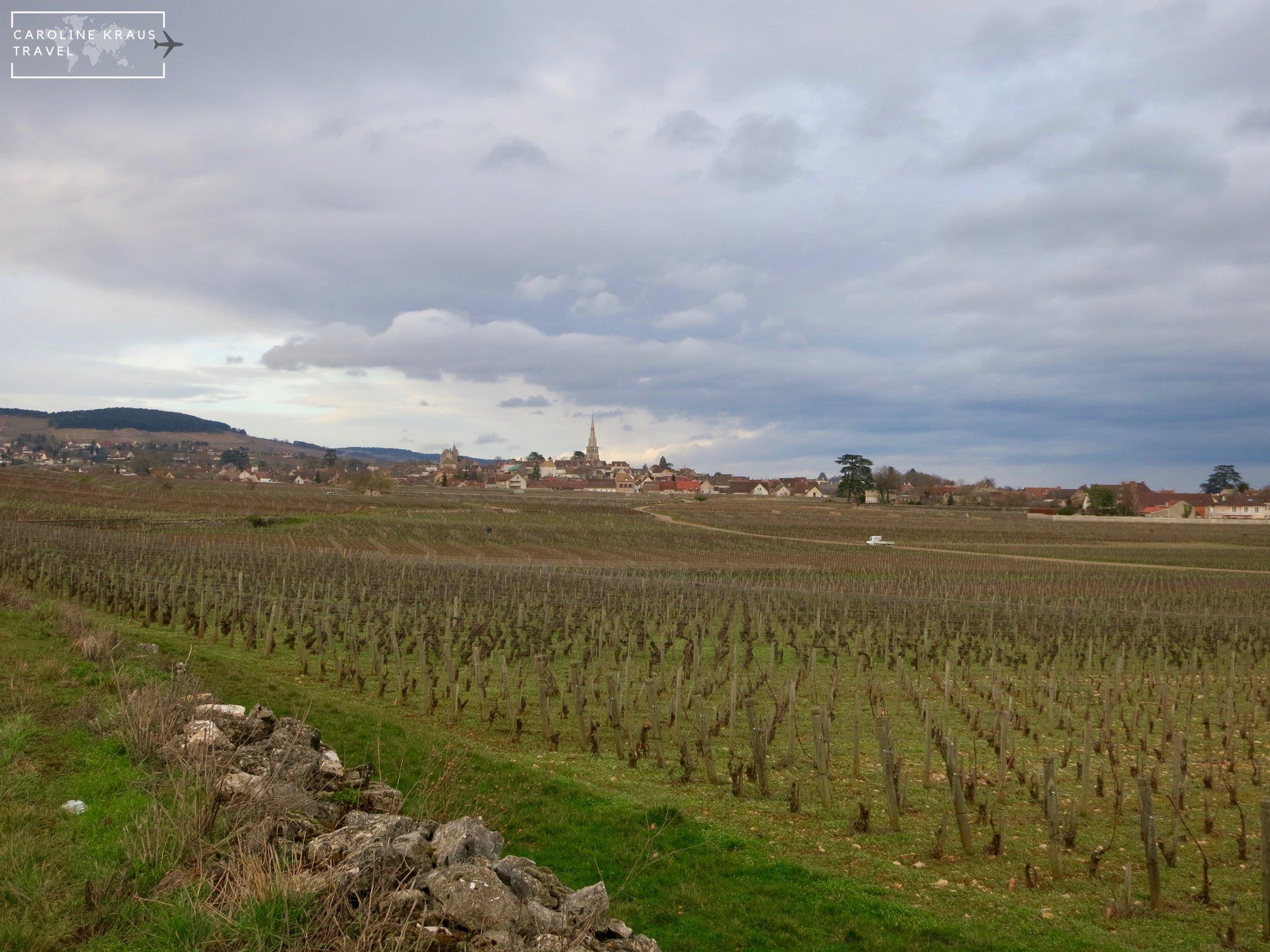 The village of Meursault