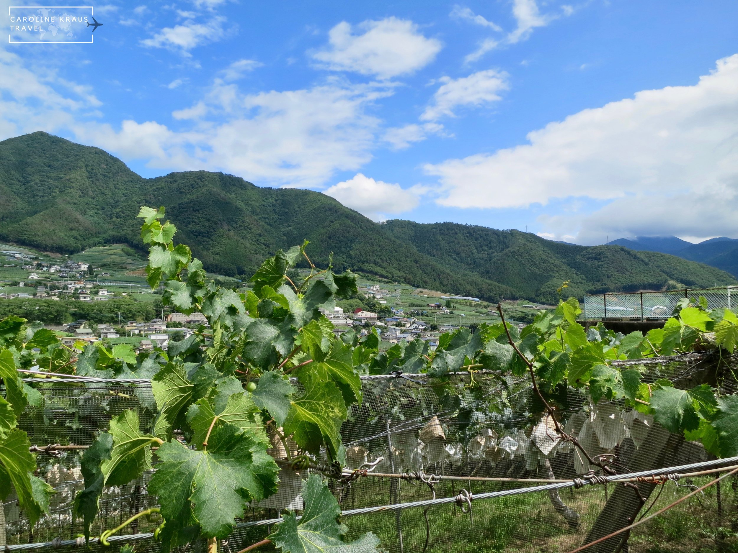 How to Escape to the Katsunuma Wine Region Just Beyond Tokyo