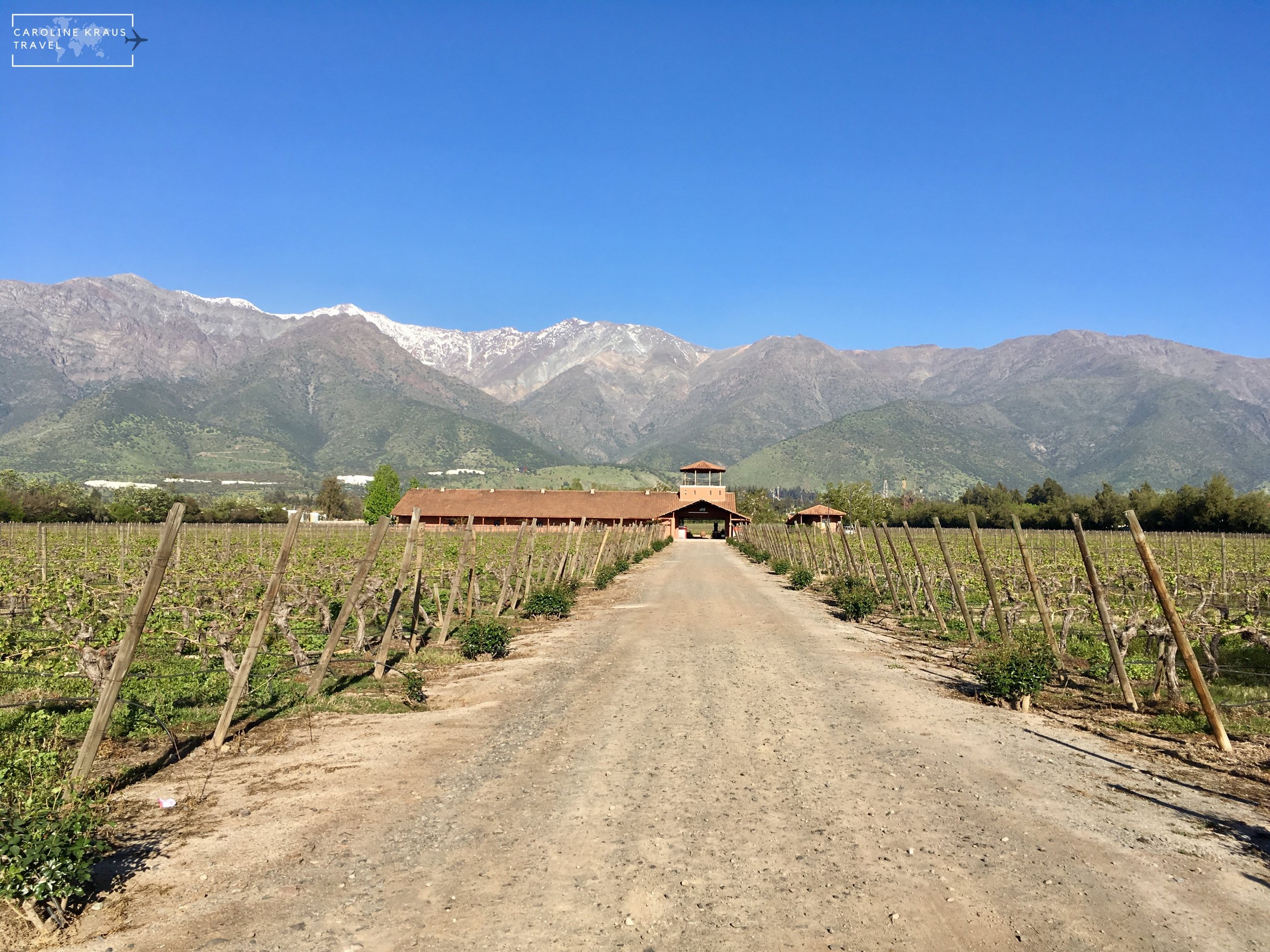 Why Santiago is a Wine Lovers Dream