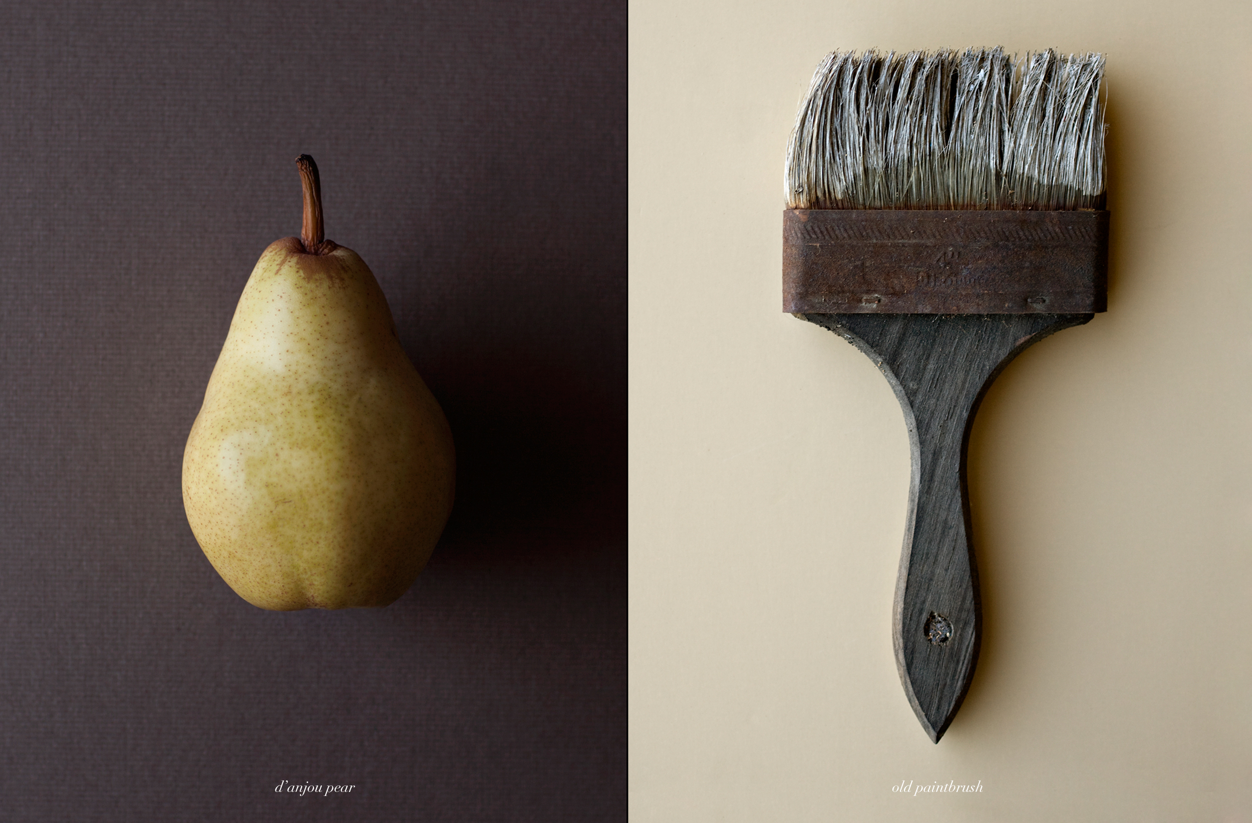 pear+paintbrush.jpg