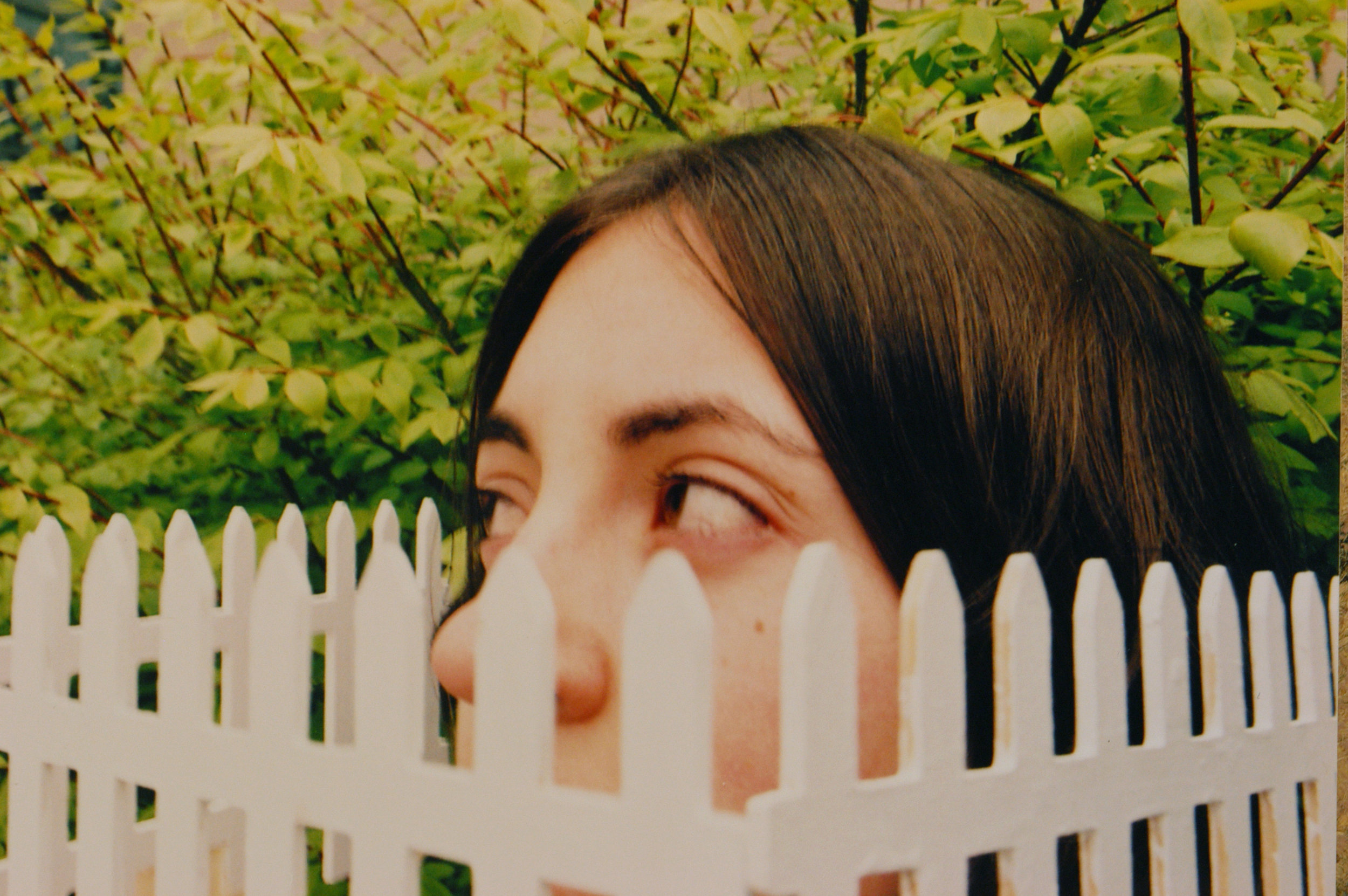 Photo series sample. White picket fence.