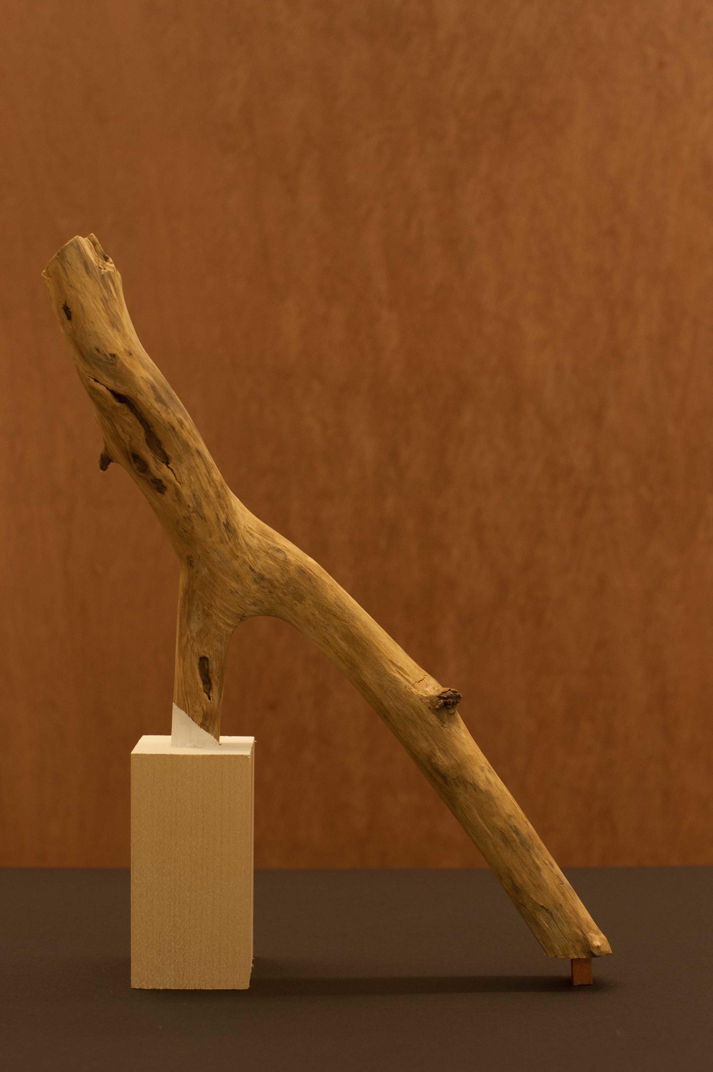 Vulture-Worship_8inx13in_Scultptural-Object_SANTIAGO.jpg