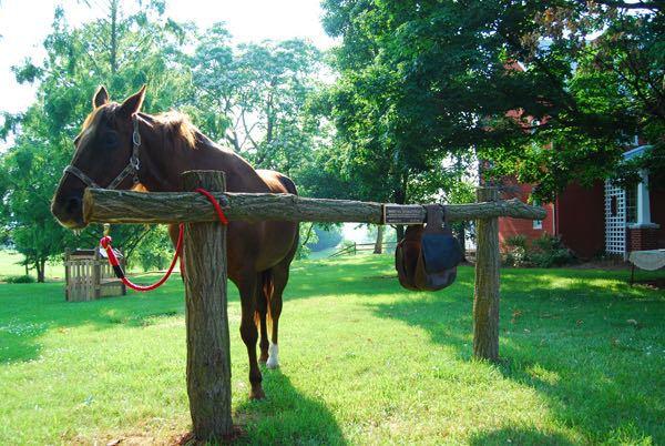 horse post jk riders.jpg