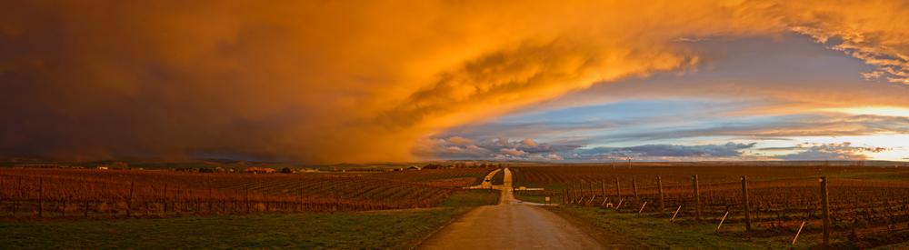 BMLT_landscape_Sunset_Road_Panorama_farmlands_crops.jpg