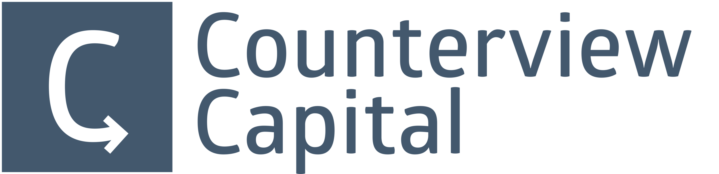 Counterview Capital Logo.png
