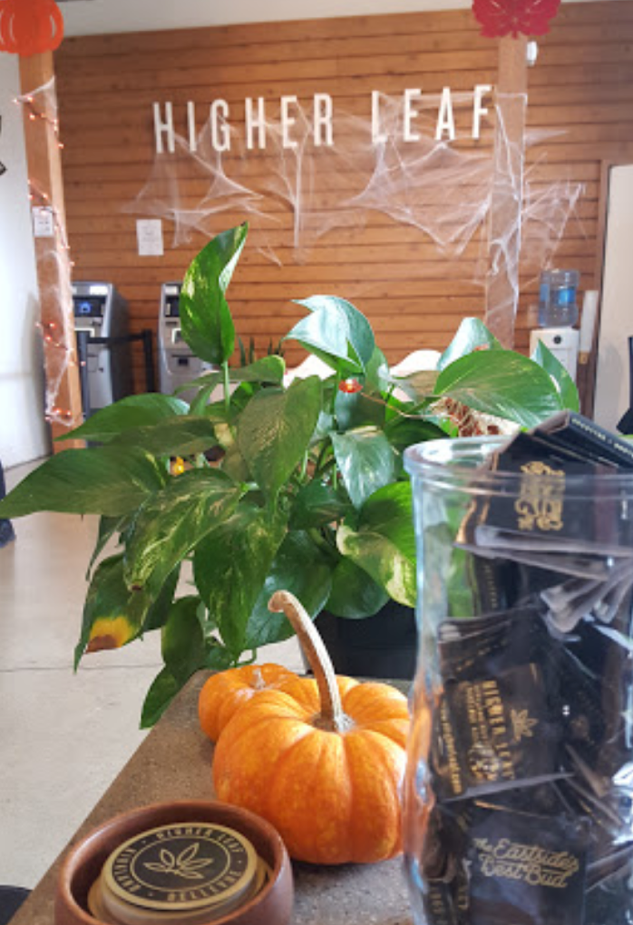 Higher Leaf Bellevue Kirkland Weed Pot Cannabis Pot Shop Eastside Pot Bud.png