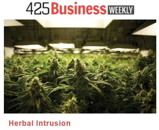 425 article Thumbnail.PNG