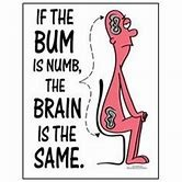 if the bum is numb the brain is the same.jpg