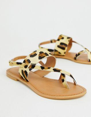 10948232-1-leopard.jpg