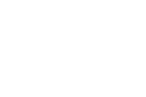 logo_jnj.png