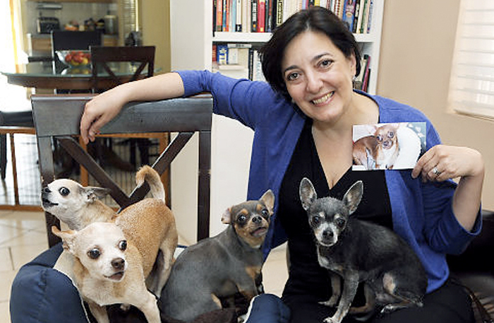 Pet Owners Struggle with Euthanasia Decision (PDF)   NY Daily News