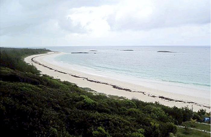 Road Less Traveled: Abaco Islands (PDF)   NY Daily News
