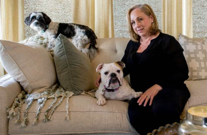 Pet-proofing Your Home and Furniture, and Preventing Damage   Newsday