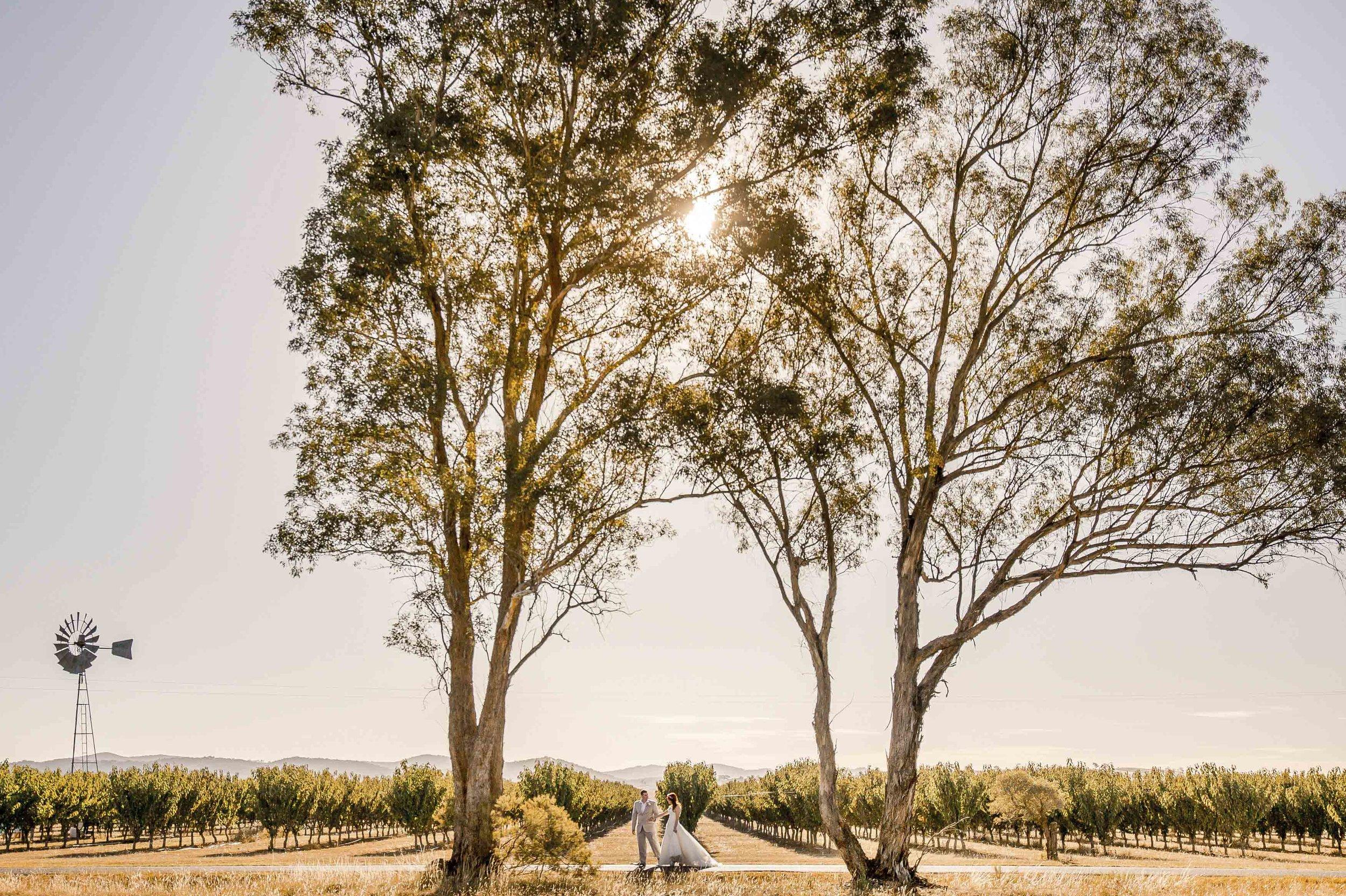 Feather & Birch_ Wedding Photography_Queensberry.jpg