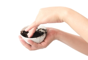 giynow_coffee_grounds_bowls_hands_hold_white_background.jpg