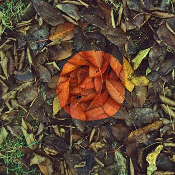 andy goldsworthy 2.jpg