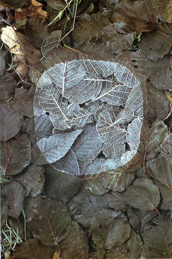 andy goldsworthy.jpg